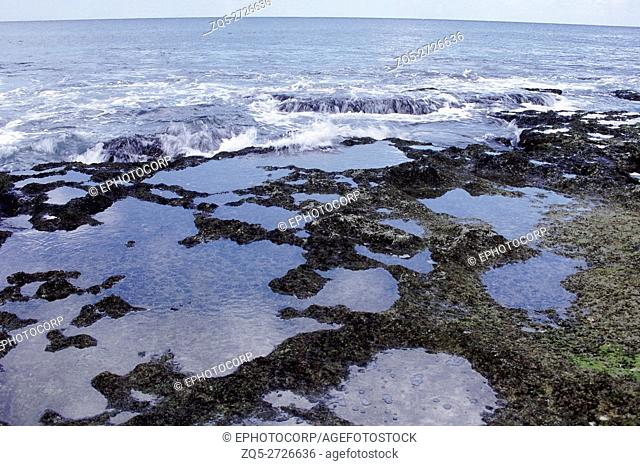 A tide-pool at a rocky shore at low tide. Tidepools on such shores are the ideal place to find and observe littoral marine creatures like marine snails, crabs