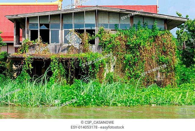Abandoned house overgrown grass the waterfront
