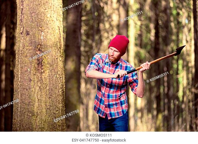 focused lumberjack with an ax chopping a tree into the forest