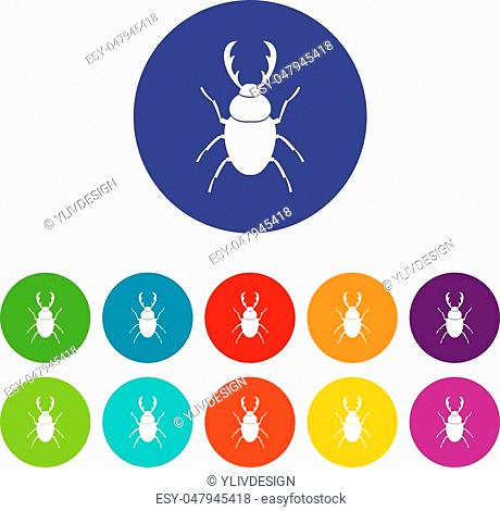 Stag beetle set icons in different colors isolated on white background