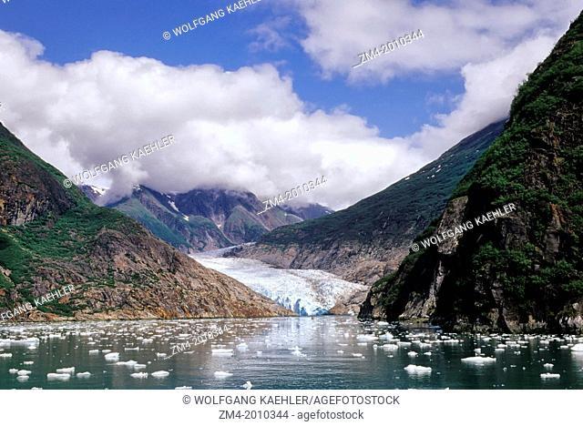 USA, ALASKA, NEAR JUNEAU, TRACY ARM, NORTH SAWYER GLACIER, CRUISE SHIP, M.S. YORKTOWN CLIPPER IN FRONT OF GLACIER