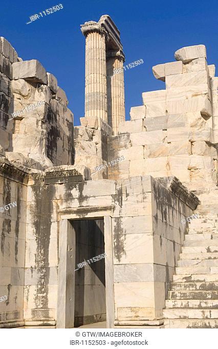 Ionian columns, Apollo temple, Didyma, Turkey