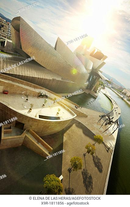 View from La Salve bridge of the Guggenheim museum and the river Nervion, Bilbao, Biscay, Basque Country, Spain