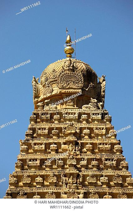 Brihadishwara Temple Vishwakarmas Tamilnadu India