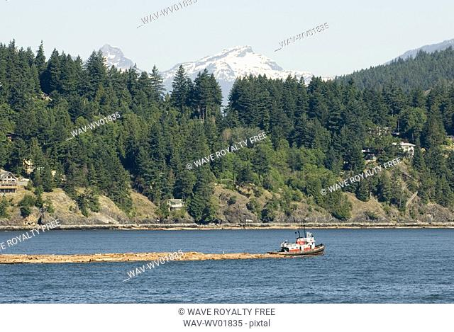 Tug Boat pulling logs through the ocean with mountains in the background, Howe Sound, BC