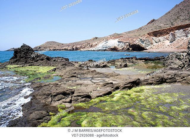 Cala Raja. Cabo de Gata-Nijar Natural Park, Almeria province, Andalucia, Spain