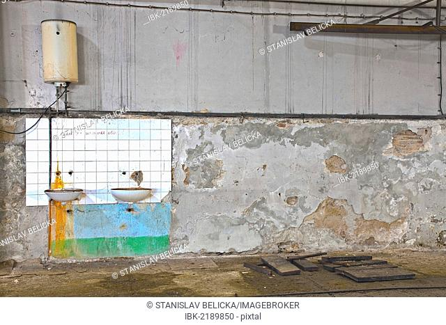 Wash room in an old abandoned factory in Rijeka, Croatia, Europe