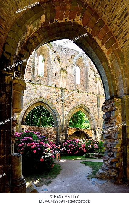 France, Cotes d'Armor, stop on the Way of St James, Paimpol, Beauport abbey 13th century, inside the abbey church