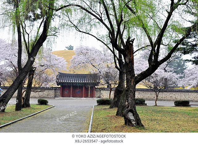 South Korea, Gyeongju, Tumuli park and Bulguksa temple