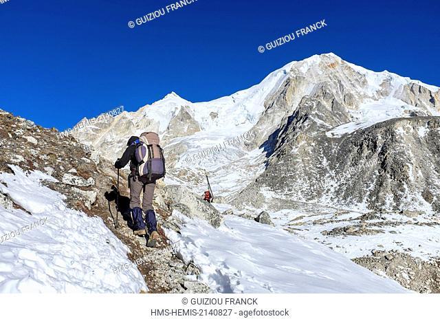 Nepal, Gandaki zone, Manaslu Circuit, between Dharamsala and Bimthang, climb to the Larkya Pass