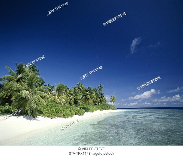 Beach, Holiday, Indian ocean, Landmark, Maldive islands, Maldives, Palm trees, Sand, Sea, Tourism, Travel, Tropical, Vacation