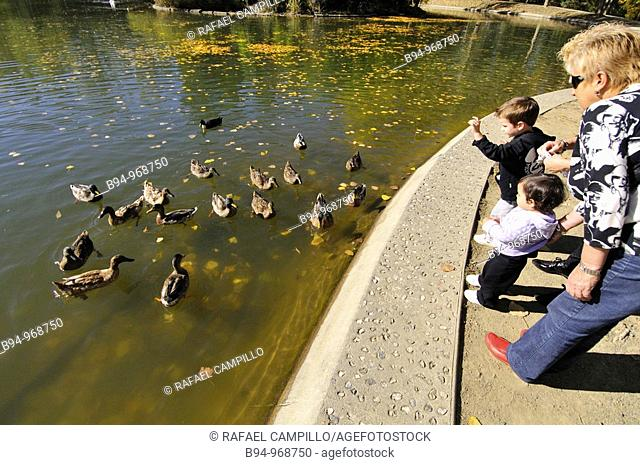 People with ducks by the Osseja lake in autumn. Languedoc-Roussillon, Pyrenees-Orientales, France
