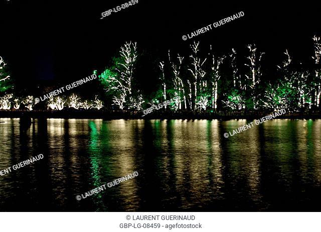 Trees, lake, Ibirapuera, Capital, São Paulo, Brazil