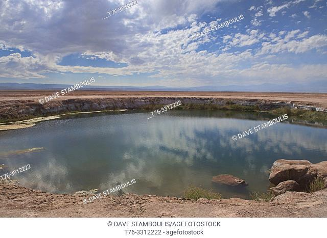 Ojos de Salar freshwater pool in the desert, San Pedro de Atacama, Chile