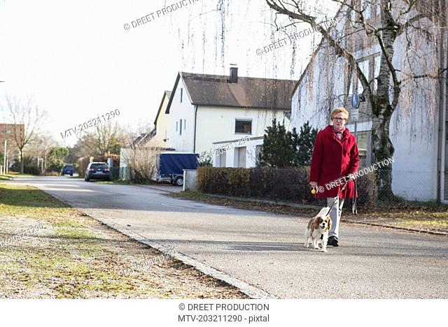 Old woman walking with pet dog on street