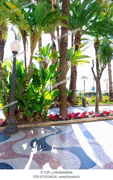 Alicante la Explanada de Espana in Spain