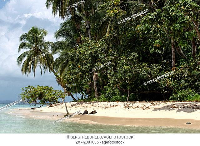 Island beach taken from the water surface with lush tropical vegetation, Bocas del Toro, Caribbean sea, Zapatillas Keys, Panama