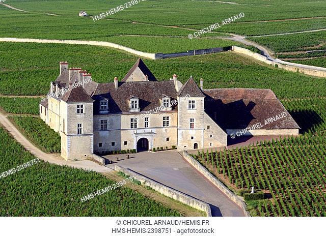 France, Cote d'Or, Vougeot, clos de Vougeot (aerial view)