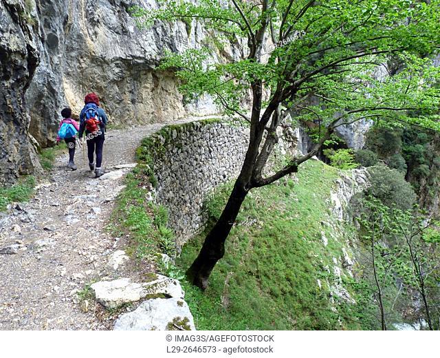 Ruta del Cares, Picos de Europa National Park, Asturias, Spain