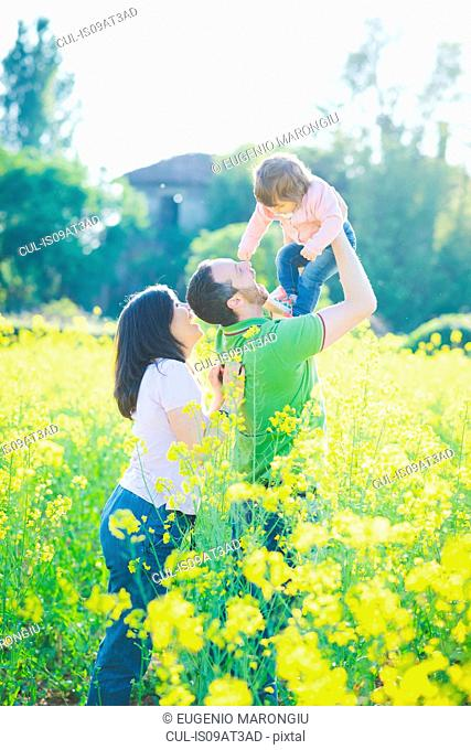 Mid adult couple playing with toddler daughter in yellow blossom field