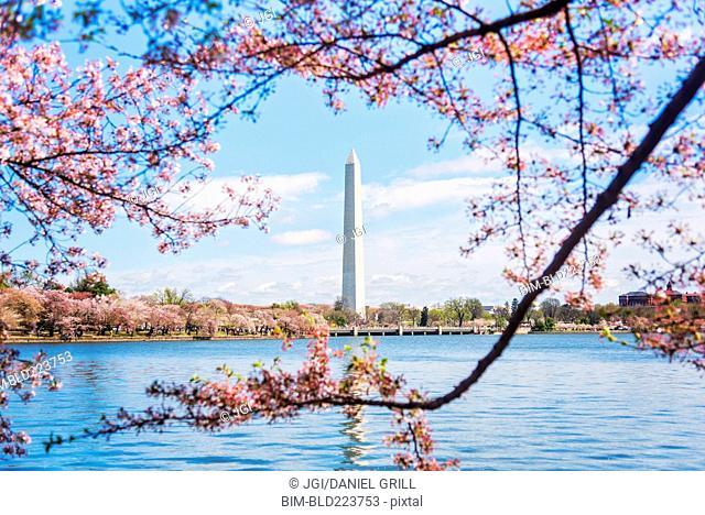 Distant Washington Monument, Washington, District of Columbia, United States