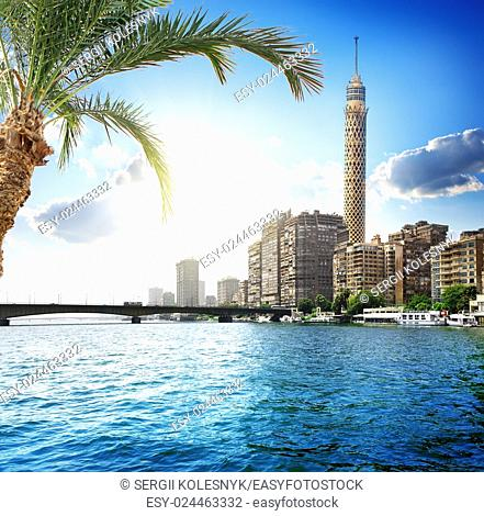 Cairo TV tower on the bank of Nile