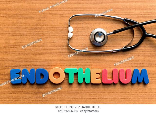 endothelium colorful medical word and stethoscope on the wooden background