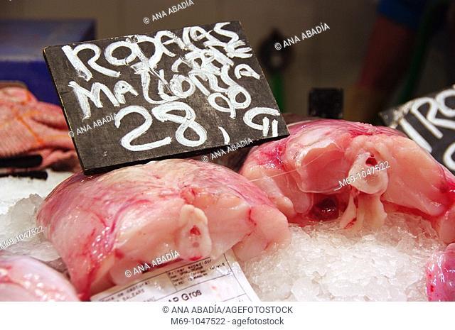 Venta de rape en el mercado de L'olivar de Palma de Mallorca