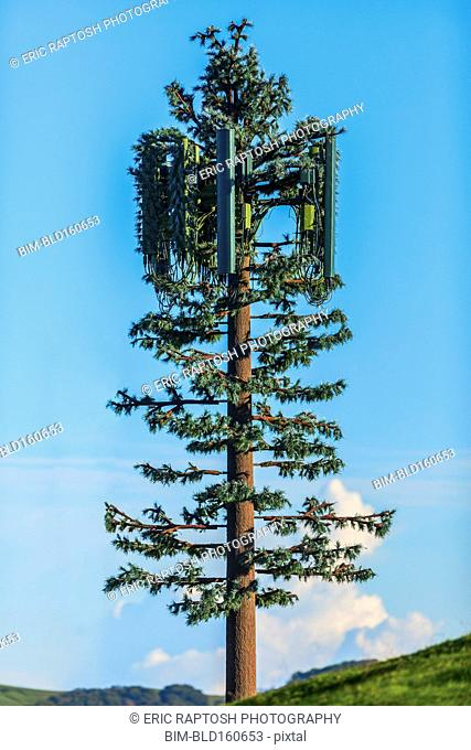 Cell tower disguised as tree under blue sky