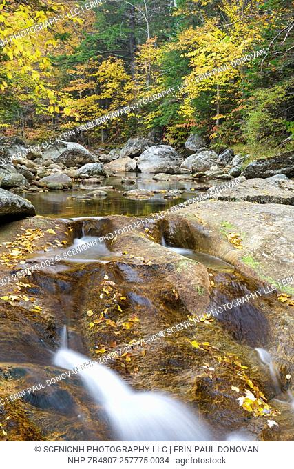 Peabody River in Pinkham Notch of the White Mountains, New Hampshire USA during the autumn months