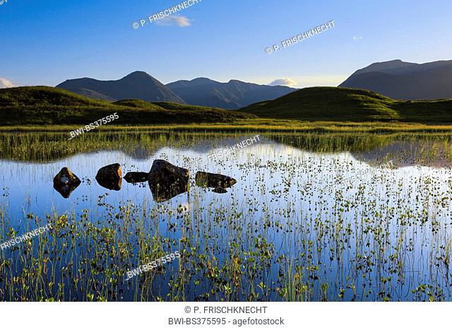 Rannoch Moor, Stob Ghabhar, United Kingdom, Scotland