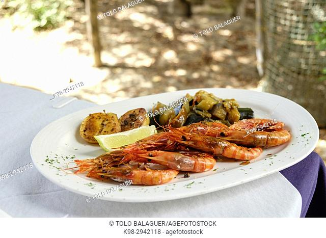 Grilled prawns, restaurante Es Codol Foradat, Beach Club, Formentera, Balearic Islands, Spain