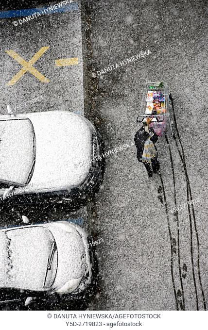 single person pushing shopping cart in heavy snowfall, Geneva, Switzerland, Europe