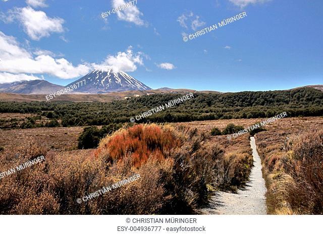 Ngauruhoe im Tongariro Nationalpark