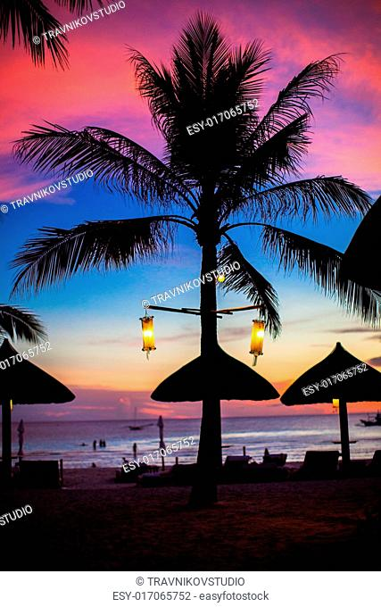 Blue pink and red sunset over sea beach with palmtree silhouette