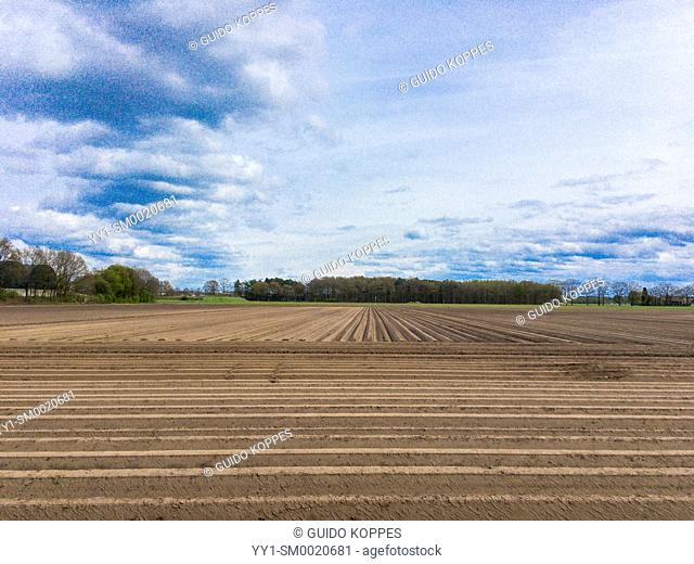Riel, Netherlands. Plowed agricultural field ready for growing crops during spring season