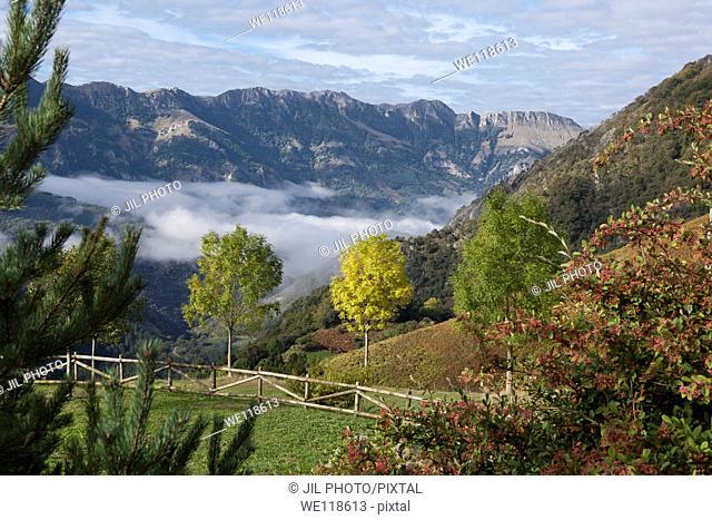 Aralar range seen from the port of Azpiroz  Navarra  Basque Country  Spain  Europe