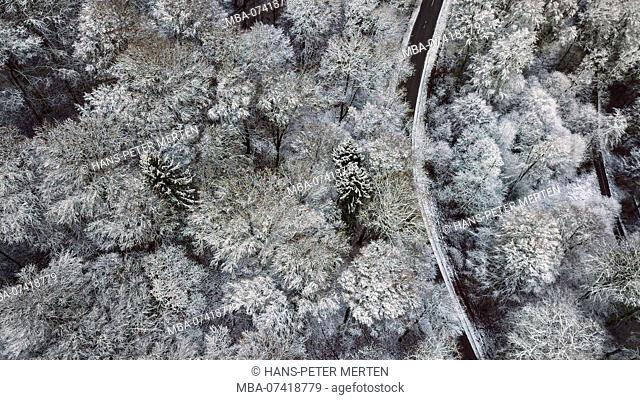 Drone shot of a snowy forest landscape in winter, village Fisch in the Saargau, Trier-Saarburg, Rhineland-Palatinate, Germany