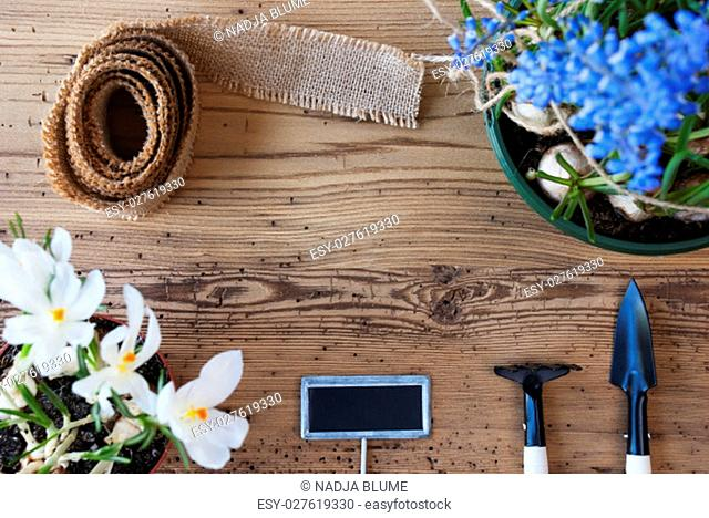 Sign With Copy Space For Advertisement Or Free Text. Spring Flowers Like Grape Hyacinth And Crocus. Gardening Tools Like Rake And Shovel