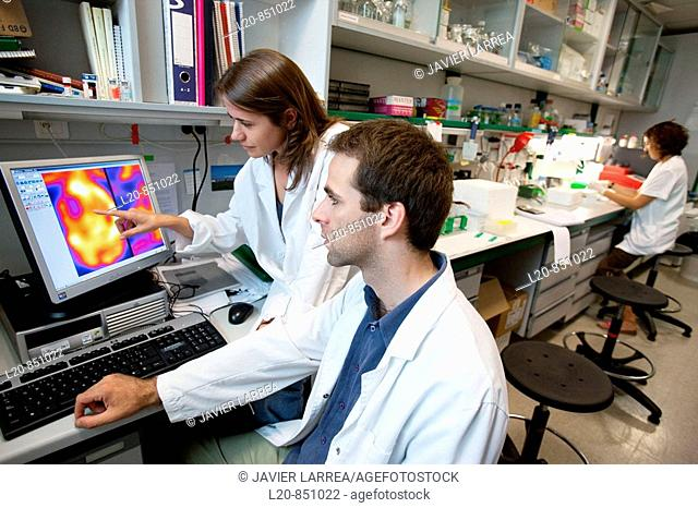 Department of Brain Ischemia and Neurodegeneration, IIBB - Institute for Biomedical Research of Barcelona, CSIC - Consejo Superior de Investigacion Cientifica...
