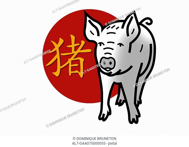 Chinese zodiac sign for year of the pig