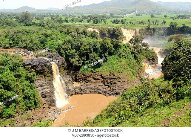 Blue Nile Falls or Tis Abay in Amharic. Amara Region, near Bahir Dar and Tana Lake, Ethiopia
