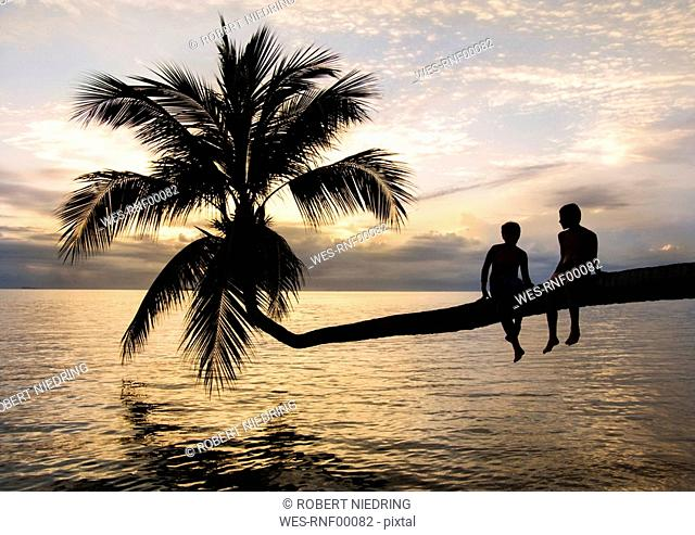 Thailand, Koh Phangan, Two boys 12-13 hanging out on palm tree overlooking ocean, rear view