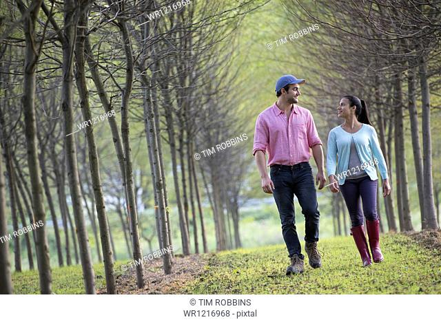 A couple walking between two rows of trees