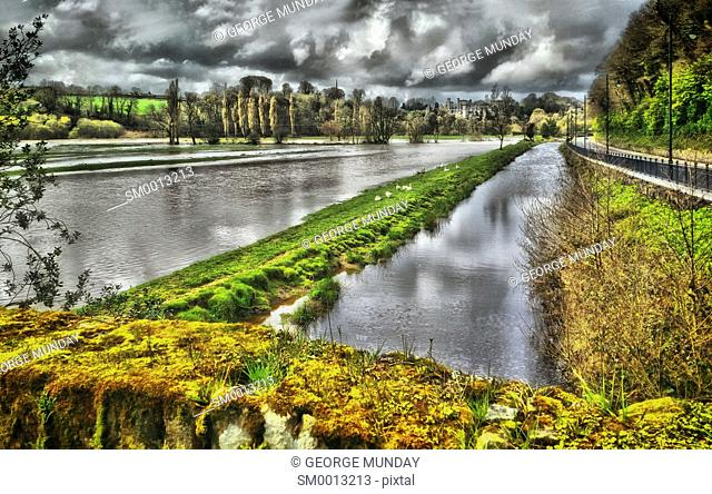 Flooded River Suir with Gese and distant castle,. Lismore,. Waterford, Ireland