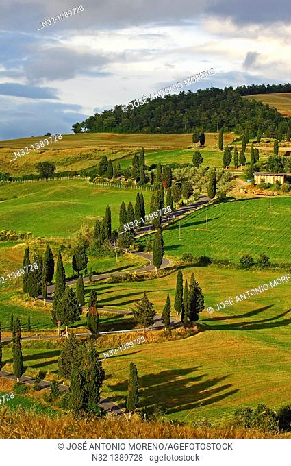 Val d'Orcia, Orcia Valley, Pienza, Road and Cypress trees, Road from pienza to montepulciano, Tuscany Landscape, UNESCO world heritage site, Siena Province