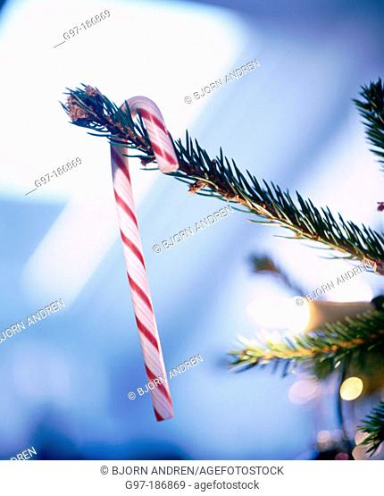 Peppermint stick in Christmas tree