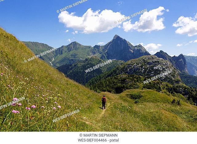 Italy, Friuli-Venezia Giulia, Carnic Alps, Hiker at Kleiner Pal