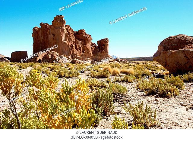 Rock Forest, Desert of Lipez, Department of Potosi, Sud Lipez Province, La Paz, Bolívia