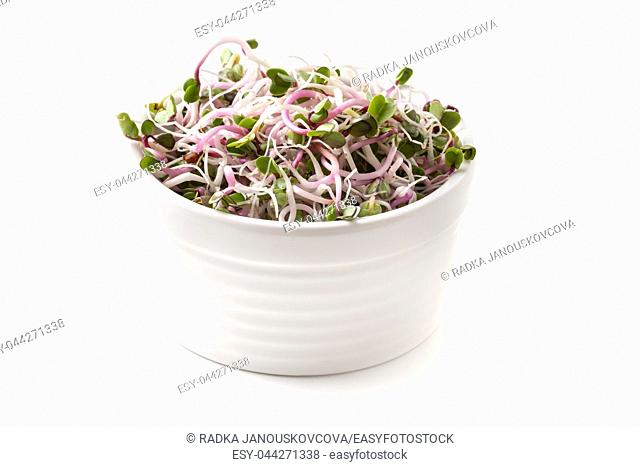 Fresh pink radish sprouts in a bowl on a white background